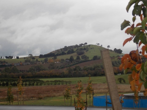 By the Yarra Valley Chocolaterie & Creamery