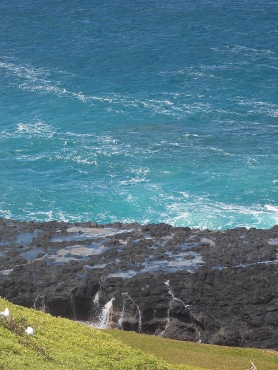 I love these colors! The Nobbies, Phillip Island, Australia.