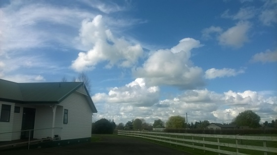 I always love the wind whipped clouds above and beyond the OMS office in Hamilton, New Zealand.