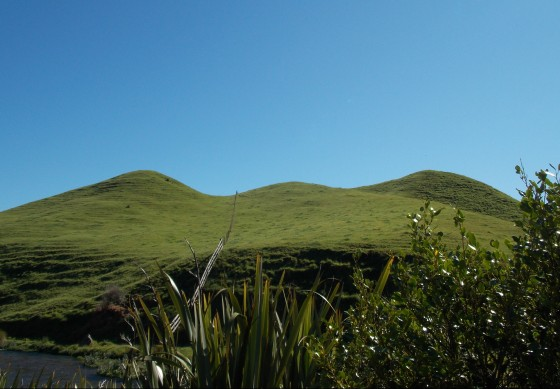 Hills in threes, along the Te Waihou Walkway. New Zealand.