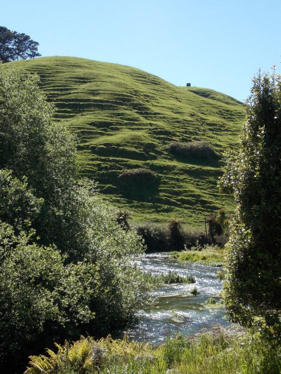 Ridged hills along a river on the Te Waihou Walkway. New Zealand.