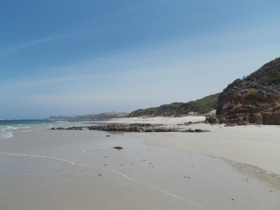 Mushroom Reef at West Head Beach, Mornington Peninsula, Victoria. Australia.