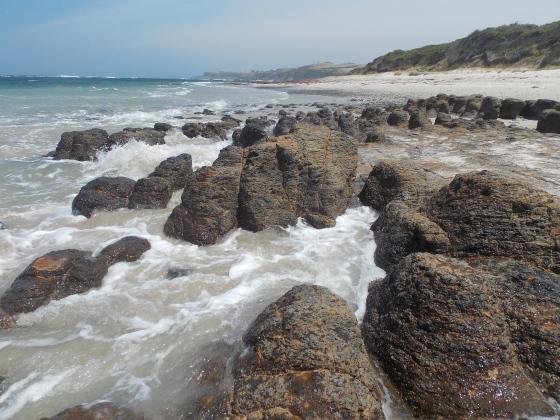 See what I mean? Mushroom Reef at West Head Beach, Mornington Peninsula, Victoria. Australia.